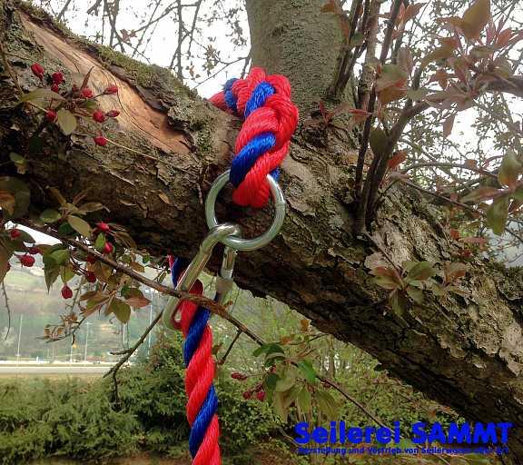 Tellerschaukel mit Ring und Karabinerhaken; 24mm PPM-Seil rot/blau